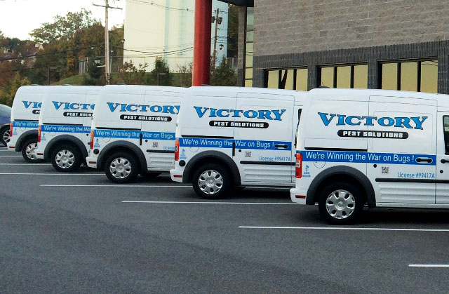 Victory Pest Solutions trucks